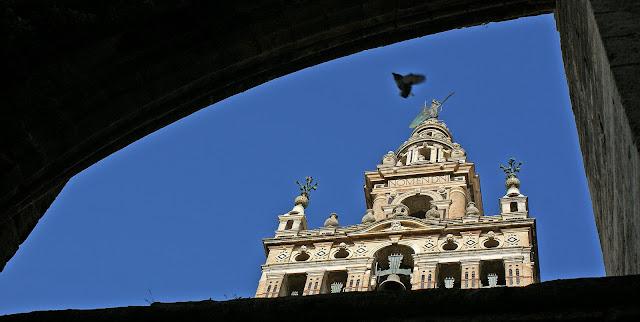 giralda-vista-desde-la-catedral