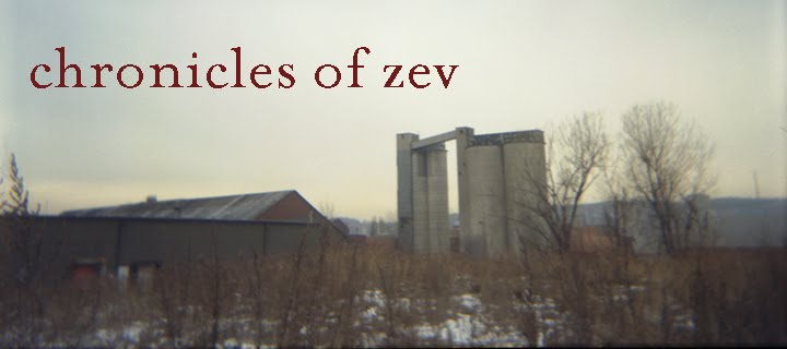 chronicles of zev
