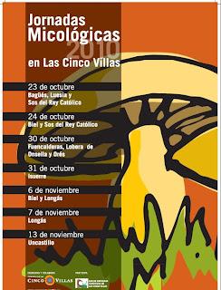 Jornadas <<span class=