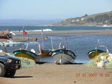 CURANIPE (Provincia de Cauquenes, VII Region)