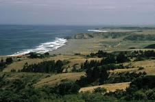 Pullay (146 Km. Concepción)
