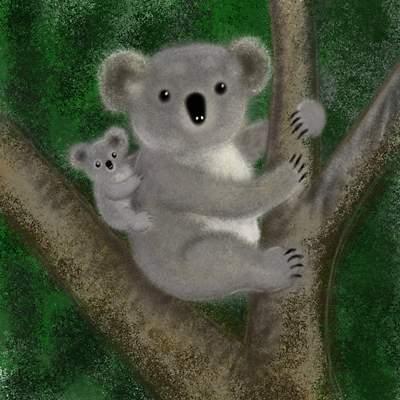 El Koala es un marsupial Q Es Un Koala