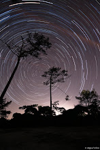 Pole Star Trail taken by Miguel Claro