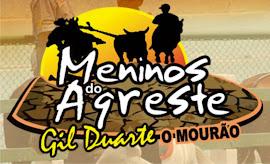 BANDA MENINOS DO AGRESTE