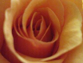 Από μικρό το θαύμα είναι λουλούδι κι άμα μεγαλώσει θάνατος.