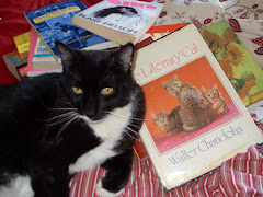 Merlin, the Literary Cat
