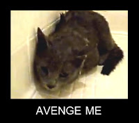 cat-avenge-me-dusty