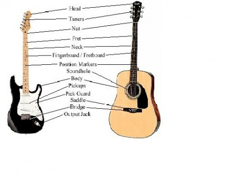 Guitar Parts & Fretboard