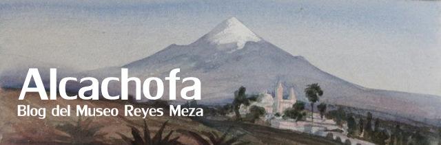 Alcachofa / Blog del Museo Reyes Meza