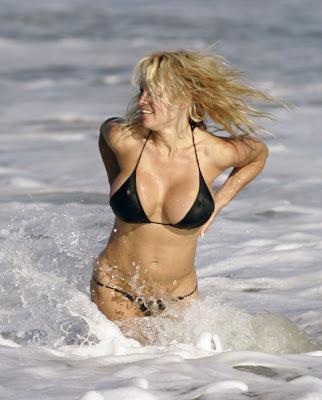 Pamela Anderson big boobs