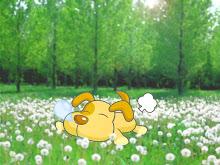 躺在遍地草原的我