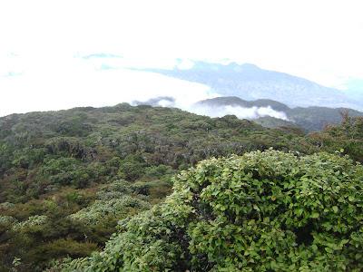 Pemandangan dari Pos 7, puncak bukit I Bawakaraeng