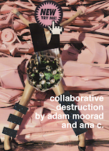 collaborative destruction (w/ana c.)