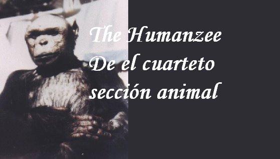 El humanzee de Revista el cuarteto