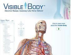 Descubra o corpo humano