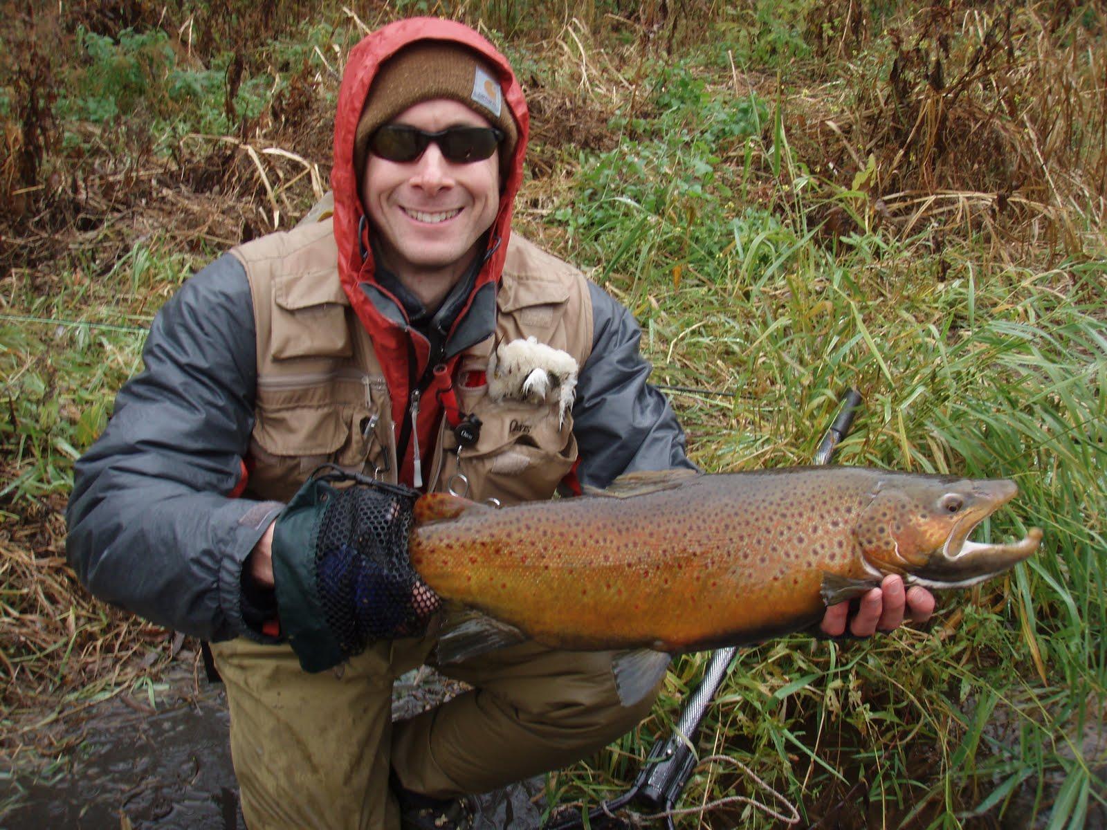 Jay peck 39 s blog november 2010 for Oak orchard fishing report