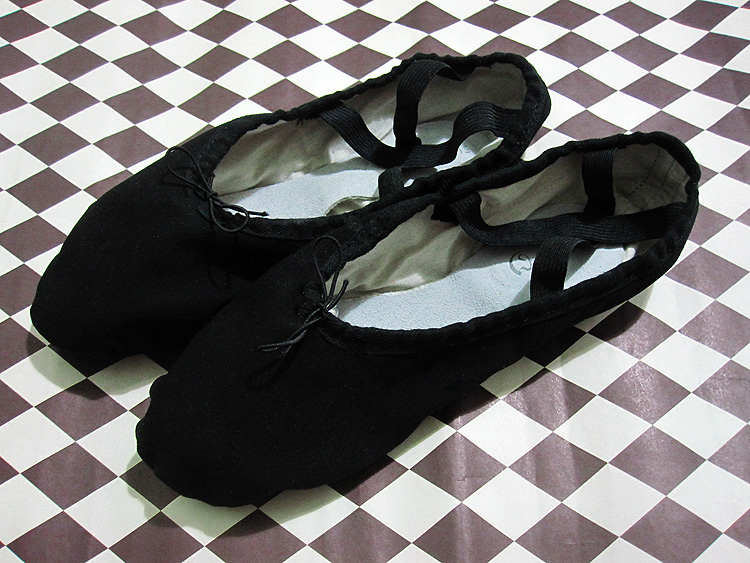Black Swan Ballet Dance Shoes Slippers