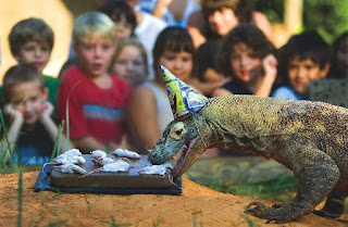 lizard eating mice birthday party funny