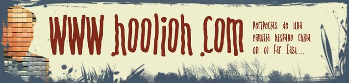 www.hoolioh.com