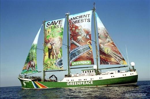 Greenpeace em São Luís