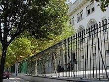 Petição: Árvores do Liceu Camões
