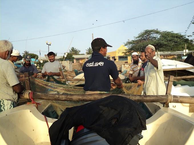 Hambantota fisher harbor - Working people