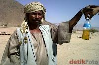 Air kencing Onta Haram atau Halal