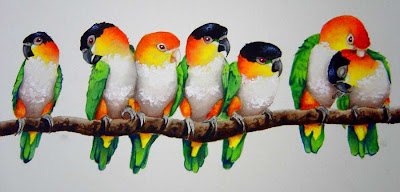 seven white bellied and black headed Caique parrots painted sitting in a row preening
