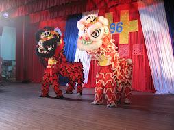 Dragones chinos en Alto Paraná