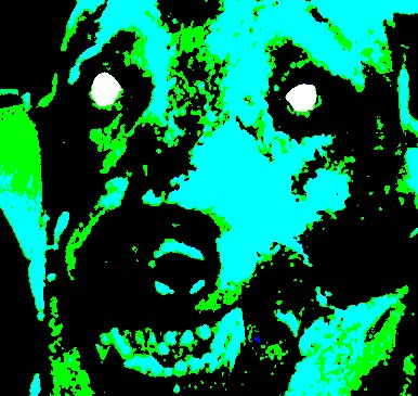 Dim Dusk Moving Gloom - Dim Dusk Moving Gloom