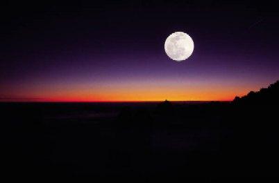 O Outro Bando Da Lua Um Palco E Preciso