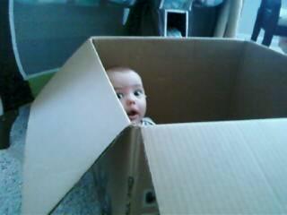 [JEM+box1]