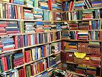 Hay muchos libros de donde escoger...