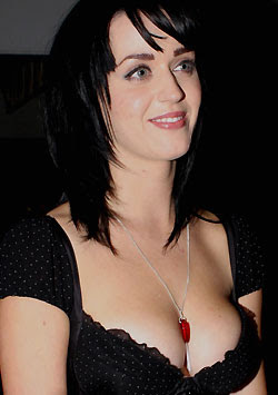 Katy Perry vows never to strip for Playboy