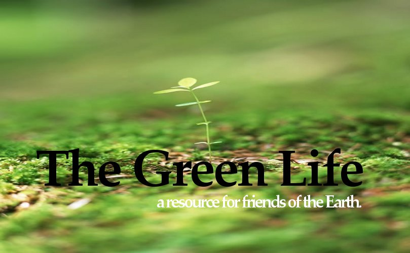 the green life a center for resources