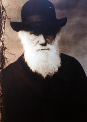 Charles Darwin S Principle Of Natural Selection Variation