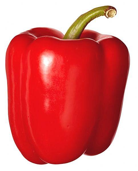 GardenSeed: Bell Pepper - Big Red