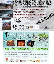 La misma lucha - dos festivales