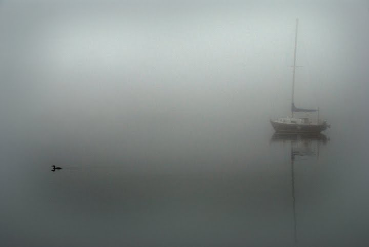 [fog4]