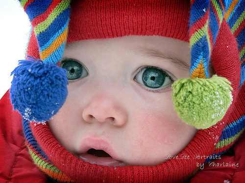 baby picture snow baby cap desktop wallpaper