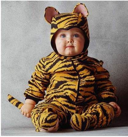 Cute baby like bengal tiger dressing picture