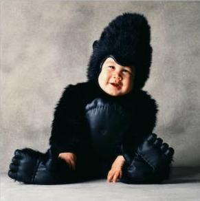 Cute baby like gorilla dressing picture