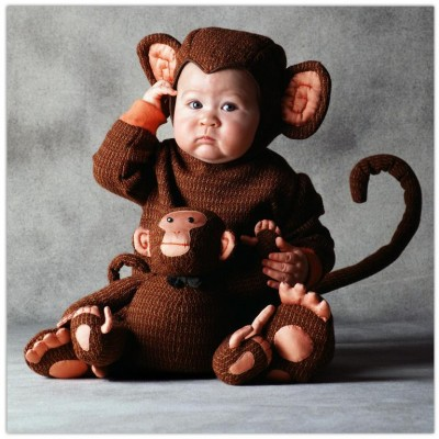 Cute baby like monkey dressing picture