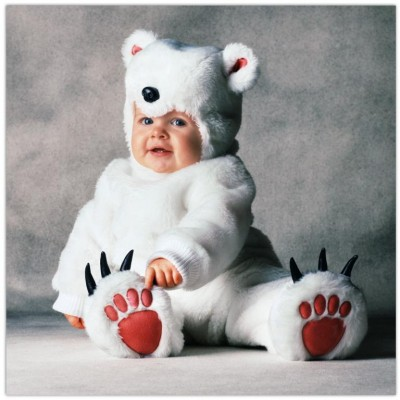 Cute baby like polar bear dressing picture
