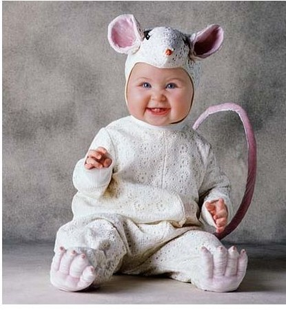 Cute baby like Rat dressing picture