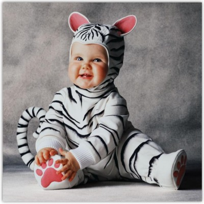 Cute baby like white tiger dressing picture