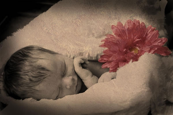 photos of babies in flowers 001