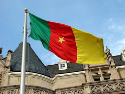 The Flag of Cameroon