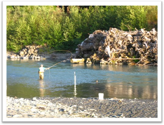 The fish files hoh river project overview for Hoh river fishing report