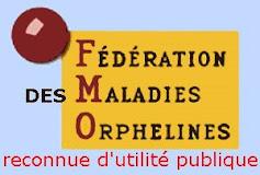 www.fmo.fr